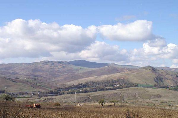 campo di grano durante le fasi dell'aratura