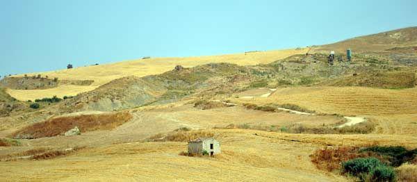 I campi di grano della sicilia centrale ingialliti dal sole