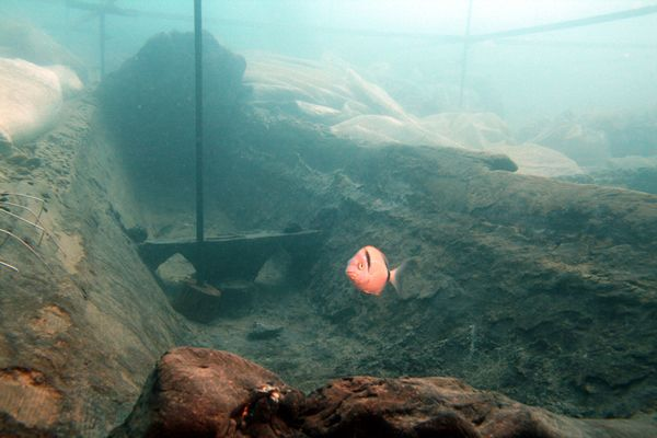 Antica imbarcazione greco-arcaica rinvenuta al largo delle coste di Gela, una delle più importanti città greche della Sicilia