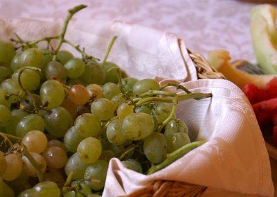 uva-biologica-siciliana2854