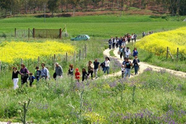 Una passeggiata in campagna al centro della Sicilia